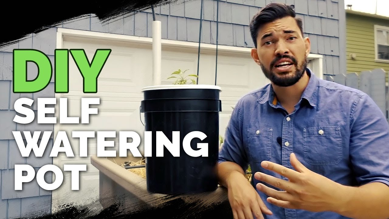 How To Build A Self Watering Pot For 10 Youtube