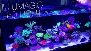 Illumagic Makes Some Really Cool LED Lights!