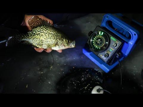Crappie Feeding Frenzy | Ice Fishing At Night!
