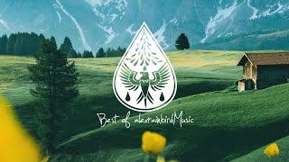 Best Of AlexrainbirdMusic Vol. 7 900k Subscribers Playlist 🎉