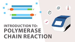1) PCR (Polymerase Chain Reaction) Tutorial - An Introduction