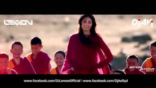 Download Hindi Video Songs - MAIN HOON HERO TERA - DJ LEMON & DJ AVI TOUR REMIX