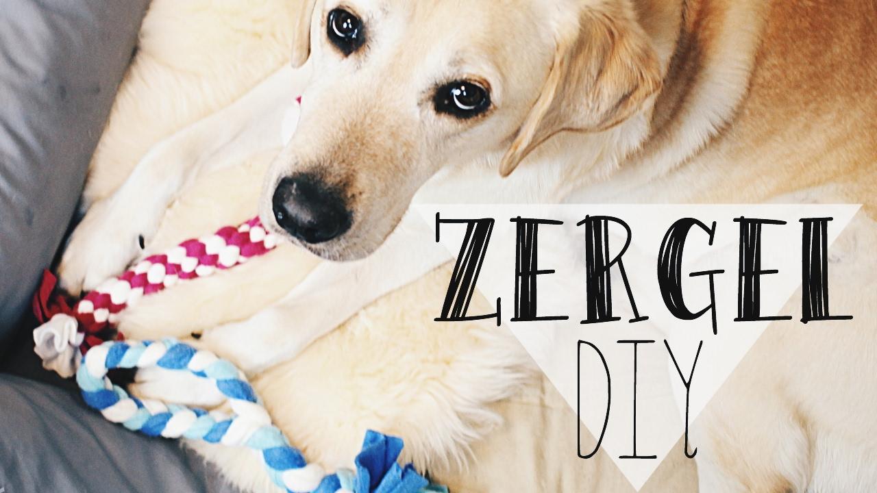Hundespielzeug selber machen zergel hunde diy scoubidou for Küchenspiegel selber machen