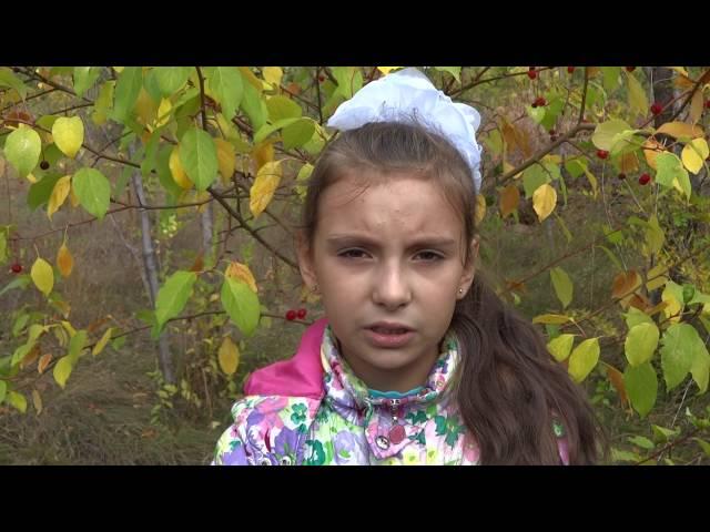 Анастасия Скачкова читает произведение «Детство» (Бунин Иван Алексеевич)