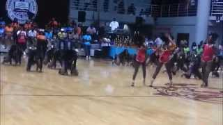 The Dancing dolls vs The prancing tigerettes :Part 1 fast stand battle Bring the heat