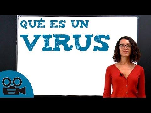 Download Qué es un virus