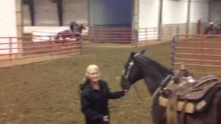 Brand Me Lucky sets arena record by two tenths Jackson Ohio