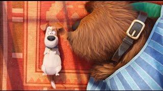 Тайная жизнь домашних животных СКОРО В КИНОТЕАТРАХ