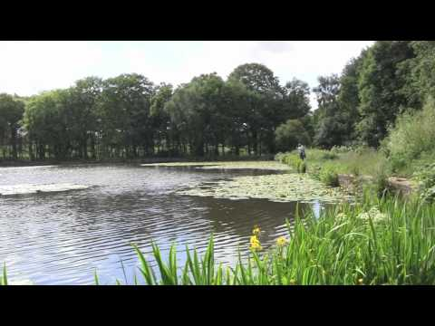 Walk To Breary Marsh And Paul's Pond, Cookridge, Leeds, UK - 24th June, 2012 (1080 HD)