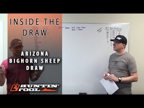 Inside the Draw : How to Apply for Arizona Bighorn Sheep