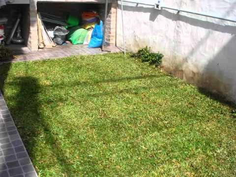 Firugrama jardin chico san isidro agosto 2011 youtube for Jardines chicos