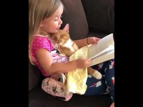 Kedisine Kitap Okuyan Sevimli Kız - edebiyathaberleri.com