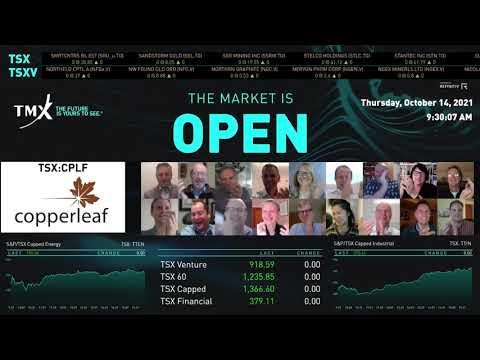 Copperleaf几乎打开了市场