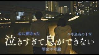 映画『殺さない彼と死なない彼女』5月8日Blu-ray&DVDリリース、4月24日デジタル先行配信
