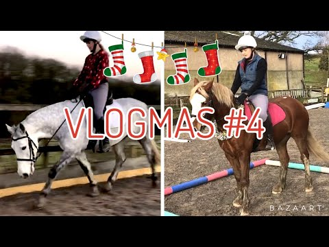 EXERCISES FOR YOUNG HORSES ~ Vlogmas #4