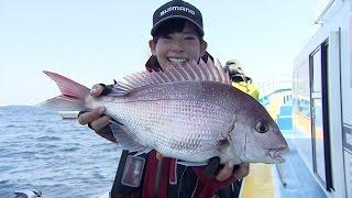 #185 人気のコマセマダイ釣り のっこみの良型サイズを追う!