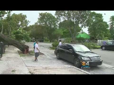 Deadly Storms Leave Their Mark On South Florida Neighborhoods