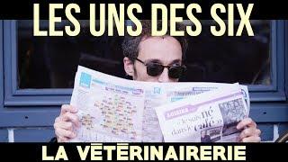 La Vétérinairerie - Film 48HFP Toulouse 2017