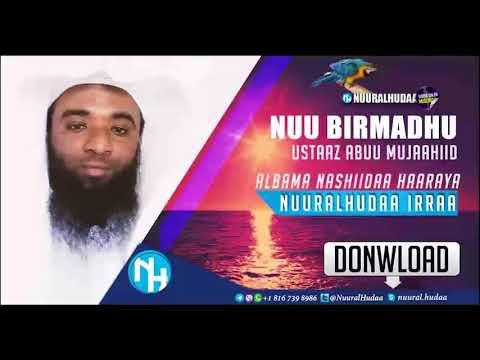 Nuu Birmadhu, Nashiidaa Haaraya Ustaaz Abu Mujaahid