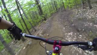 Cat Scratch Fever to Cats Paw Highland Mountain Bike Park