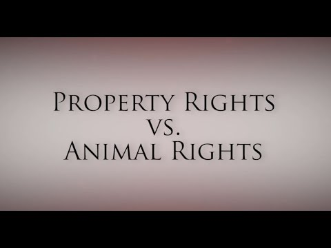 Property Rights vs. Animal Rights