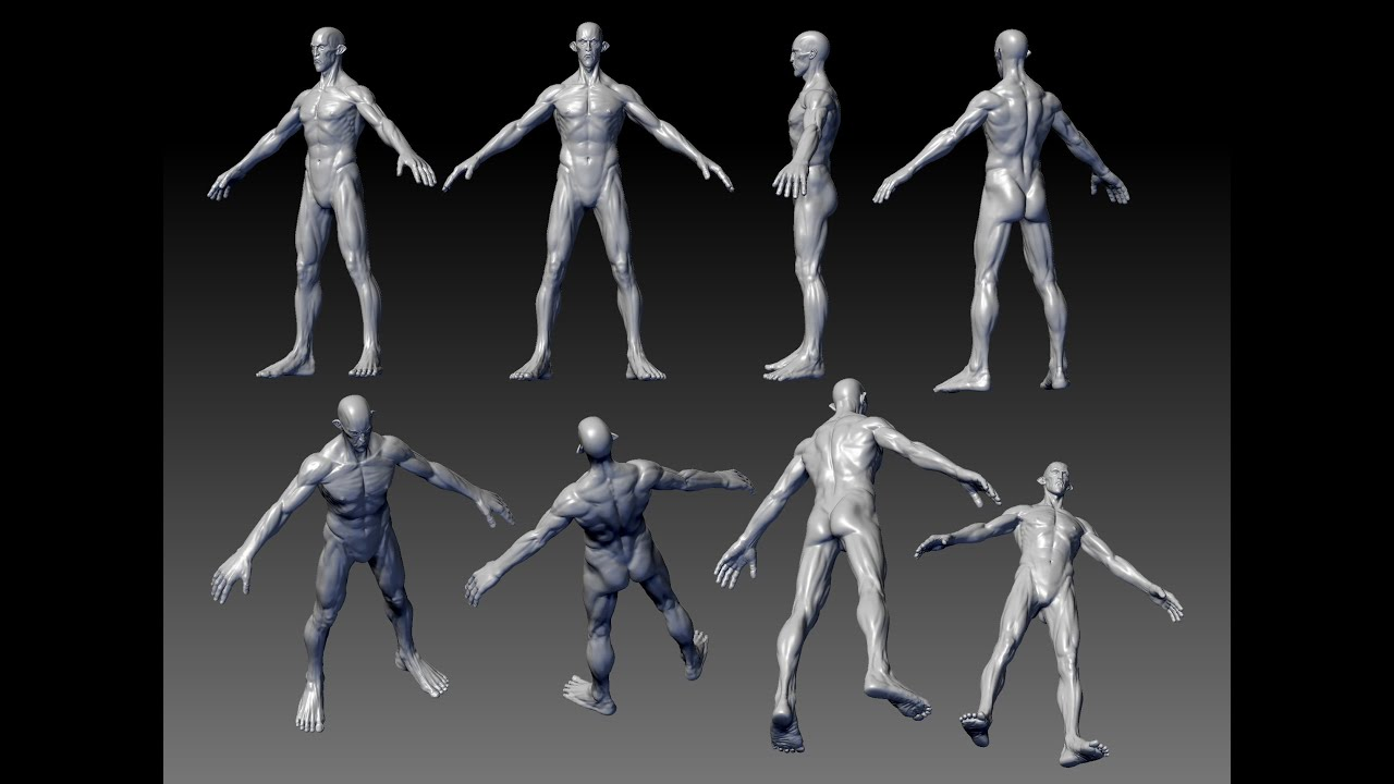 Zbrush Digital Sculpting Anatomy Of Characters For Games And Movies