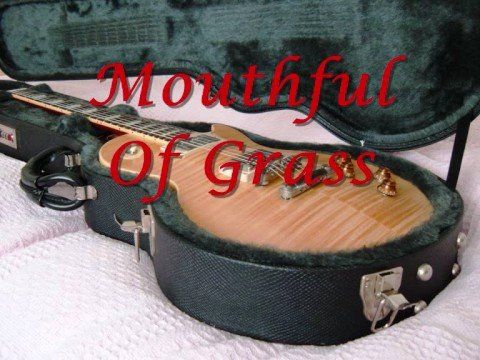 Mouthful Of Grass - Free Cover Version