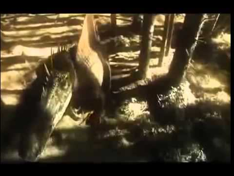 BIGGEST BADDEST KILLER DINOSAUR (AMAZING DINOSAURS DOCUMENTARY)Biggest Snake of