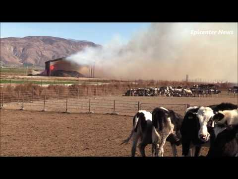 Hay Fire In San Jacinto