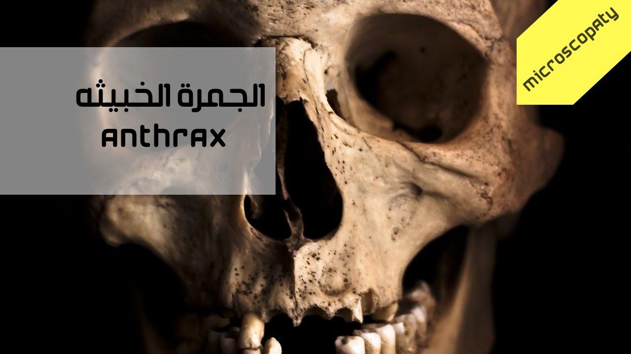 الجمرة الخبيثة - Anthrax (الحرب البيولوجية2)
