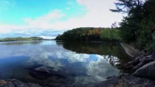 Forest Lake 360 Spherical Timelapse