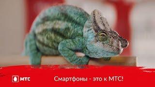МТС | Смартфоны - это к МТС!