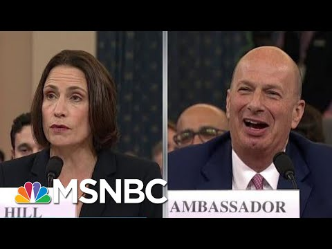 Impeachment Witness Rips 'Domestic Political Errand' For Trump | Rachel Maddow | MSNBC