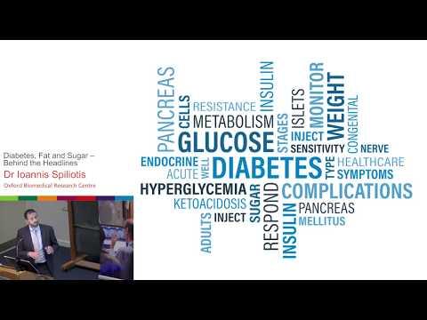 Diabetes, Fat and Sugar - Behind the Headlines - Ioannis Spiliotis