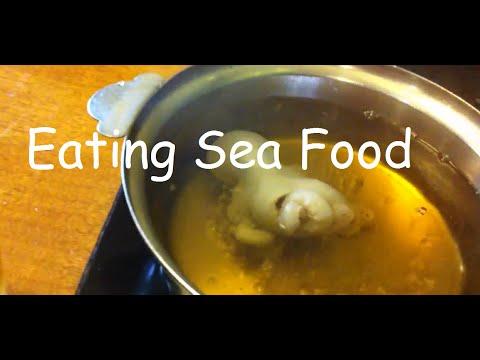 Octopus Soup Advantages For Human Health