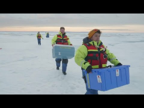 France 24:The Brief: High levels of microplastics found in Arctic snow