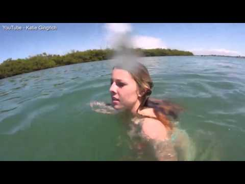It's more scared of you! Girl on Spring Break freaks out when a harmless - but giant - manatee swim