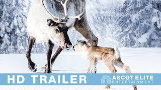 Ailos Reise I Deutscher Trailer