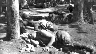 Sguardi dal fronte. La Grande Guerra nel fondo fotografico di Mario Borsari