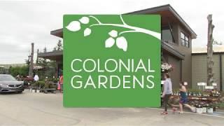 Colonial Gardens  - Weeding