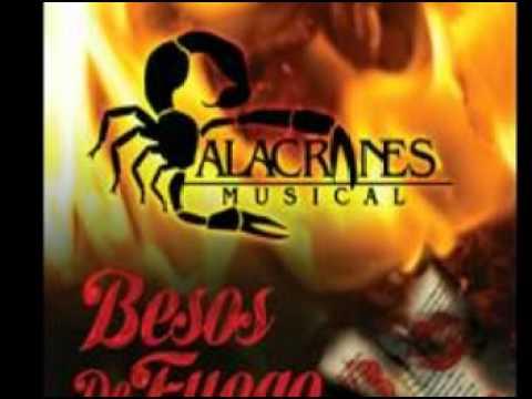 te busque  - alacranes musical 2012  (besos de fuego)