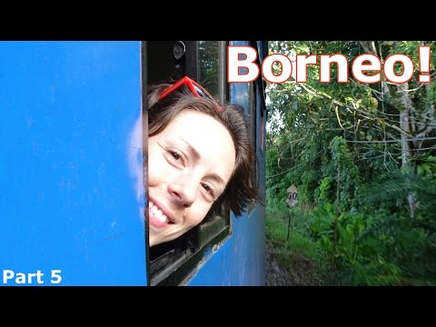 Borneo! | Part 5: Motorbike! Fireflies! Trains! Rafting! (Winter of 2016 &