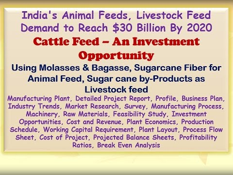 India's Animal Feeds, Livestock Feed Demand to Reach $30 Billion By 2020, Cattle Feed