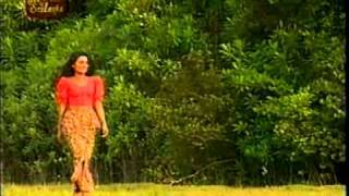 Video Sal sapu mal - Sisira Senarathna download MP3, 3GP, MP4, WEBM, AVI, FLV November 2017