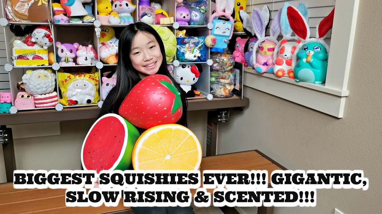 how to make homemade squishies slow rising