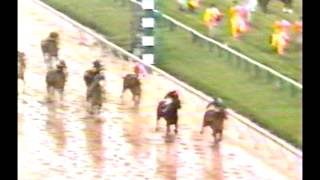 1983 Preakness Stakes - Deputed Testamony