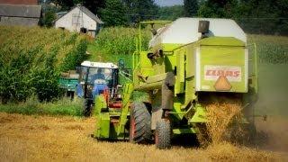 Farmtrac niebieski, Claas Zielony cały od zboża zakurzony ㋡ MafiaSolec