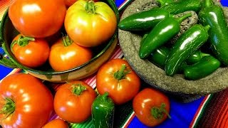 Tomato and Pepper harvest tips for a bigger better harvest