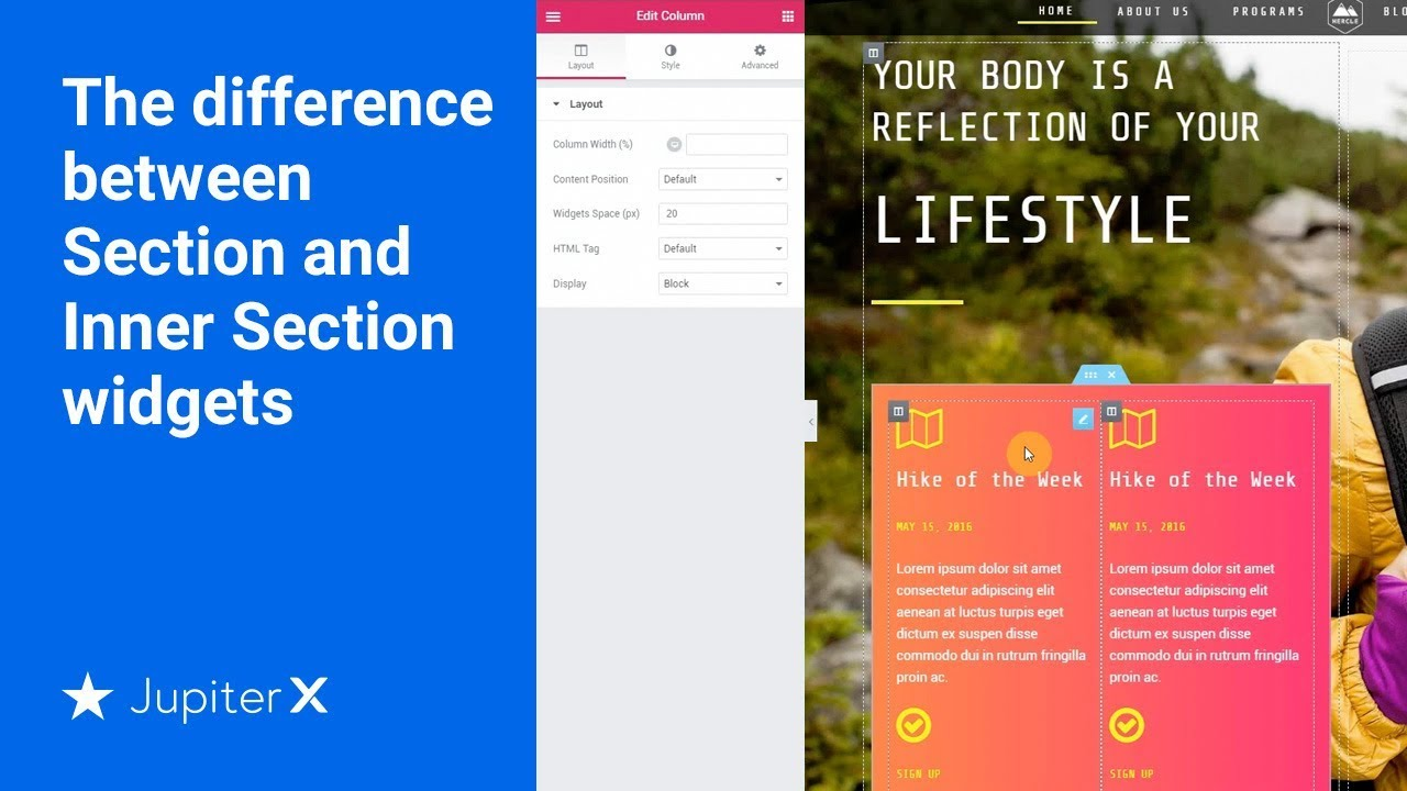 Sections and Inner Sections - WordPress Websites For