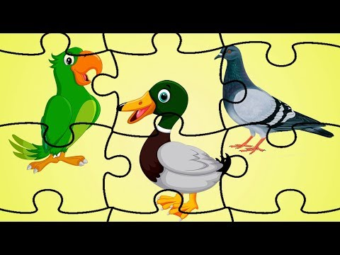 Birds Jigsaw Puzzle | Birds Puzzle For Kids And Toddlers | Puzzle Game